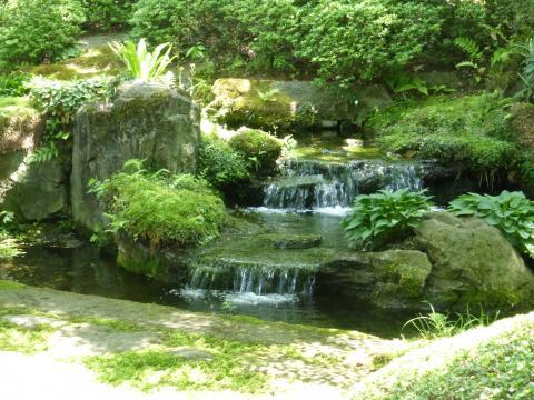 櫻井甘精堂の苔むした庭